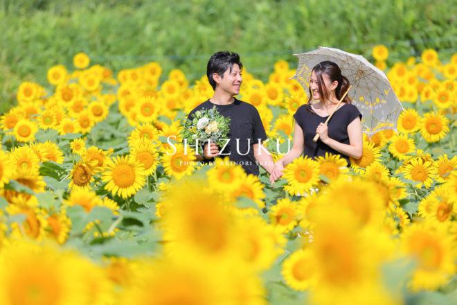 ひまわり畑でカップルフォト(前撮り)