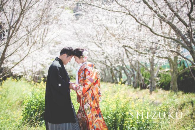 桜のフォトウェディング(色打掛)