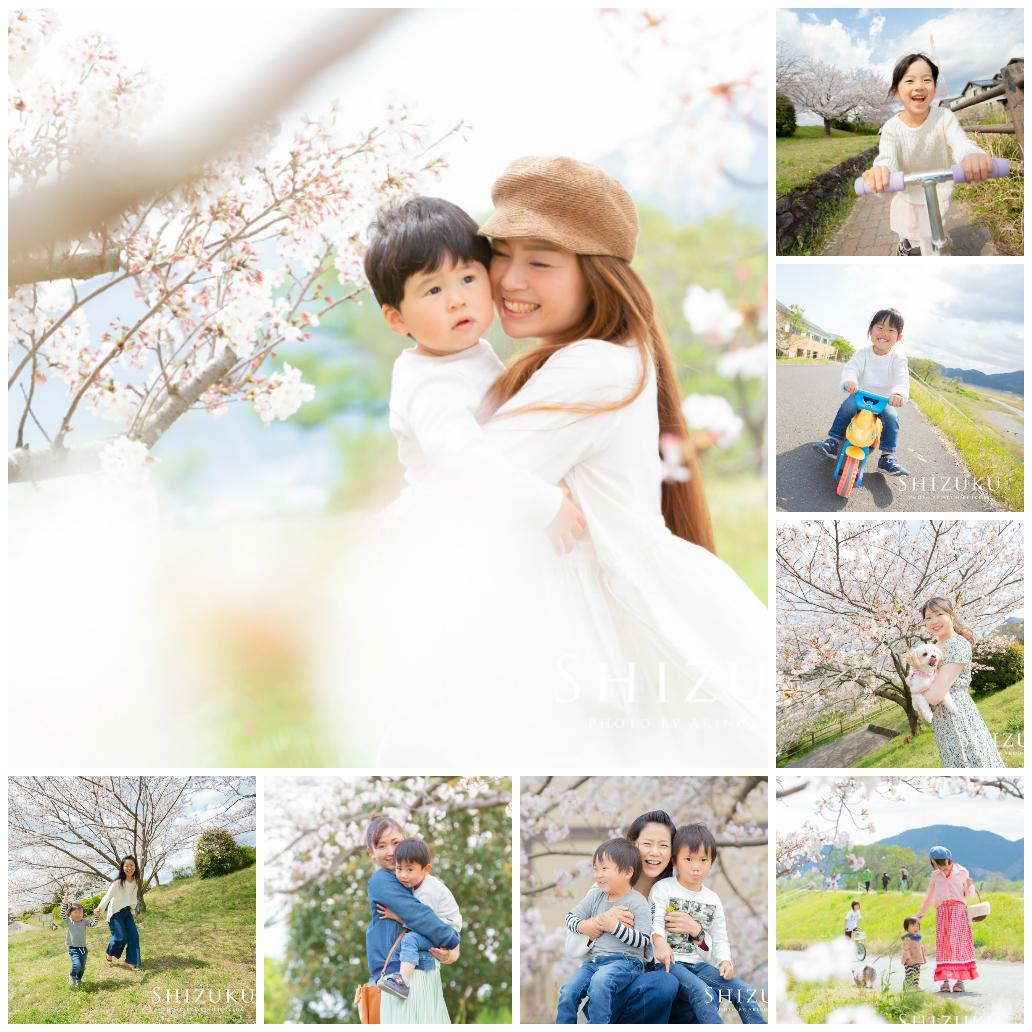 桜で撮る、ふわふわした感じの写真